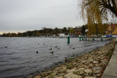 enten ufer hafen havel