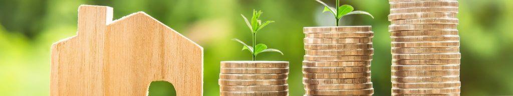 wachstum geld euro pflanzen haus holz
