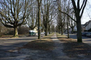gehweg strasse steinbergpark winter wittenau