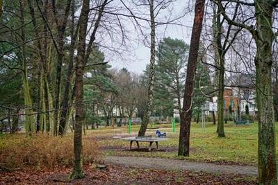 park natur gehweg berlin charlottenburg wilmersdorf