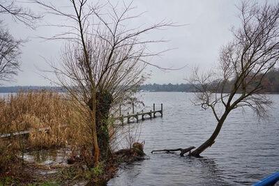 Wasser See Steg Grunewald