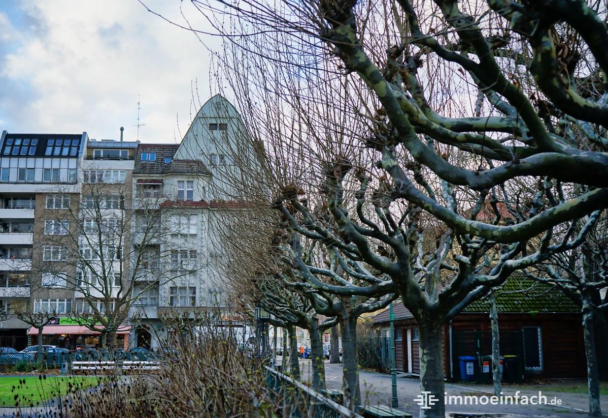 Berlin-Charlottenburg-Baeume-Park
