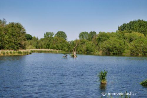 Natur Teich Karower Teiche Berlin