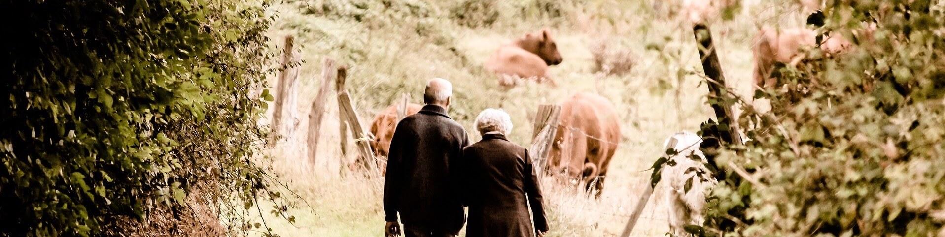 Altes Ehepaar und Waldspaziergang