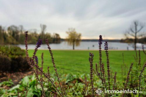 Grünanlage Hafen Lavendel Wasser Wiese