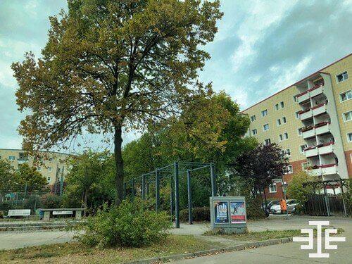 baum spielplatz wohnung immobilie berlin