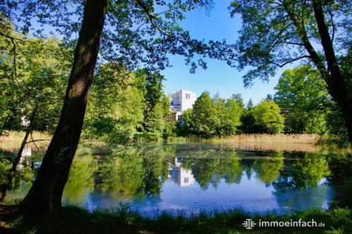 See Teich Wasser Natur Wilhelmsruh