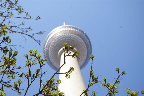 Immobilienpreise Berlin Mitte Fernsehturm Froschperspektive